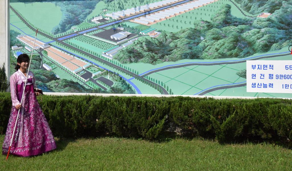 struisvogel-boerderij